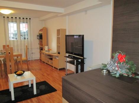 Apartman Vojvode Stepe Beograd